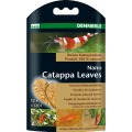 Nano Catappa Leaves (12pz.) - Dennerle